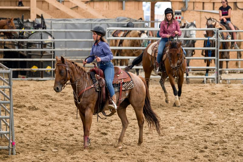 Cowgirls Stock Photos Download 1 014 Royalty Free Photos