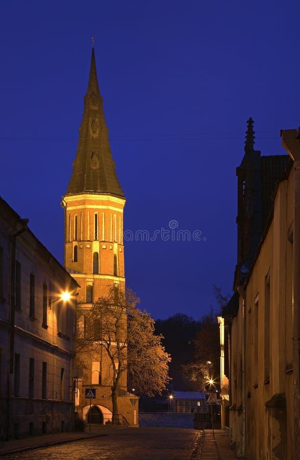 Vytautas grote kerk van Veronderstelling van Vergine Santa Mary in Kaunas litouwen stock foto