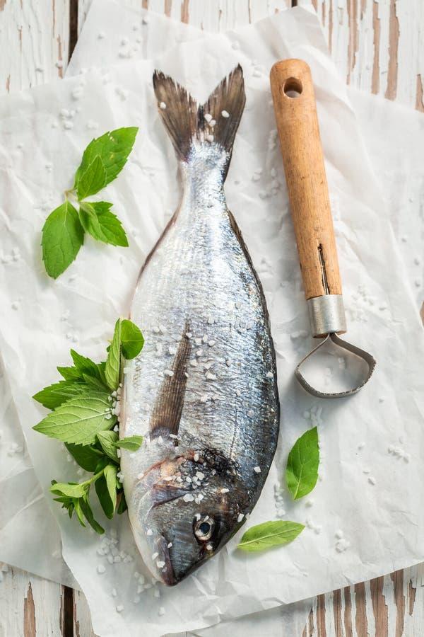 Würzende frisch gefangene Fische mit Salz auf weißer Tabelle stockbild