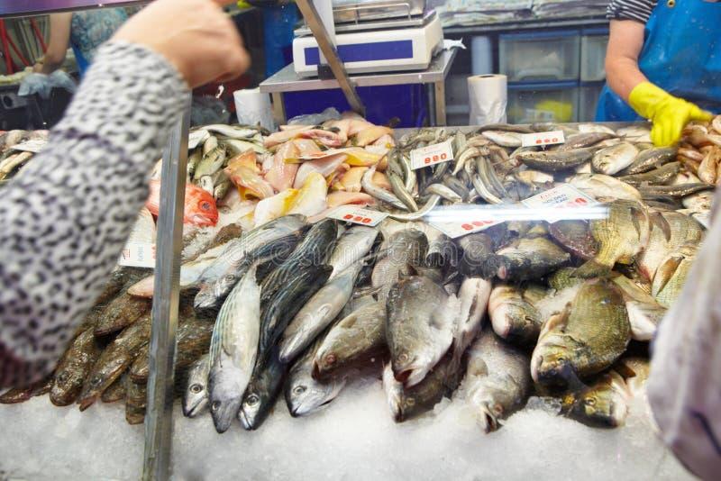 Wählen der frischen Fische lizenzfreie stockfotografie