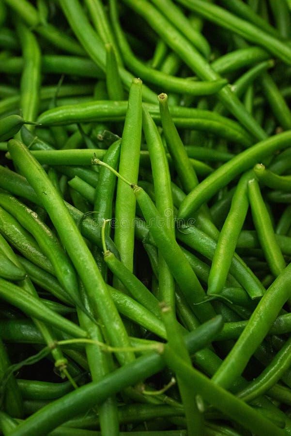 Wählte frisch die organischen grünen essfertigen Bohnen aus lizenzfreie stockfotografie