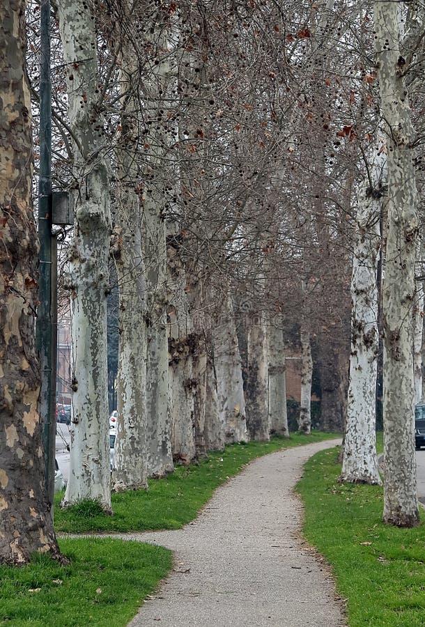 Wände von Ferrara, die alte Grenze der Stadt stockfotografie