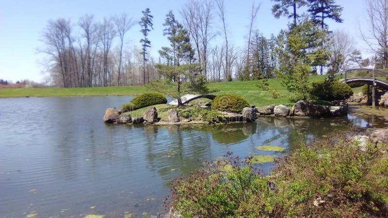 Wässern Sie Garten stockfoto