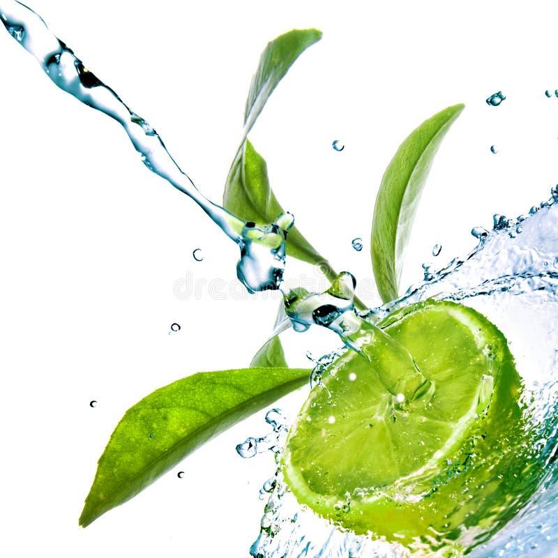 Wässern Sie Tropfen auf Kalk mit grünen Blättern lizenzfreie stockfotos