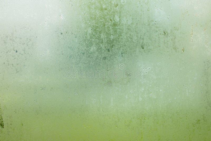 Wässern Sie Tropfen des Regens auf abgegratenem Gartenhintergrund des Fensterglases vektor abbildung