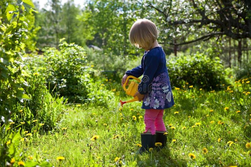 Wässernblumen des kleinen Mädchens lizenzfreies stockfoto