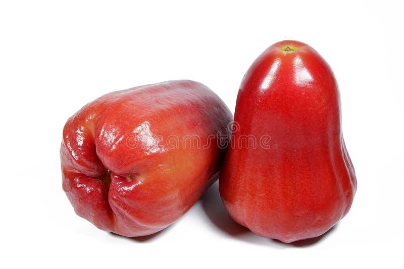 Wässrige Rose Apple stockfotos