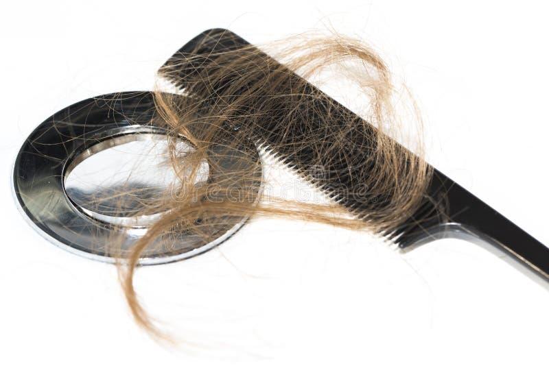 Włosiana strata na washbasin Długi brown włosy z czerni gręplą na białym basenie w łazience zdjęcia stock