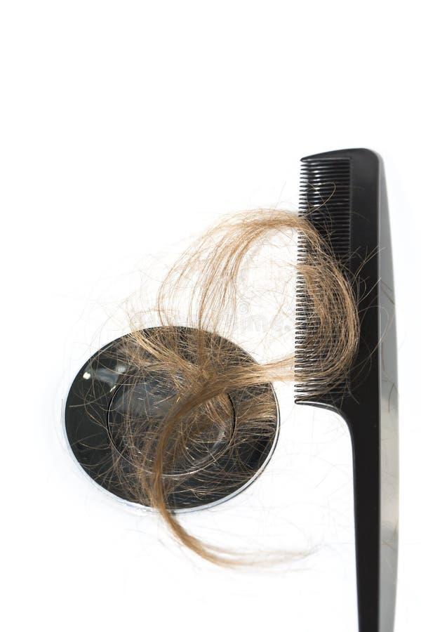 Włosiana strata na washbasin Długi brown włosy z czerni gręplą na białym basenie w łazience zdjęcia royalty free