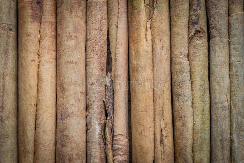 Würze, natürlicher Zimt, Stöcke, Nahaufnahme stockbilder