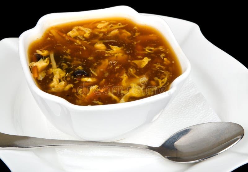 Würzige chinesische Suppe lizenzfreies stockfoto