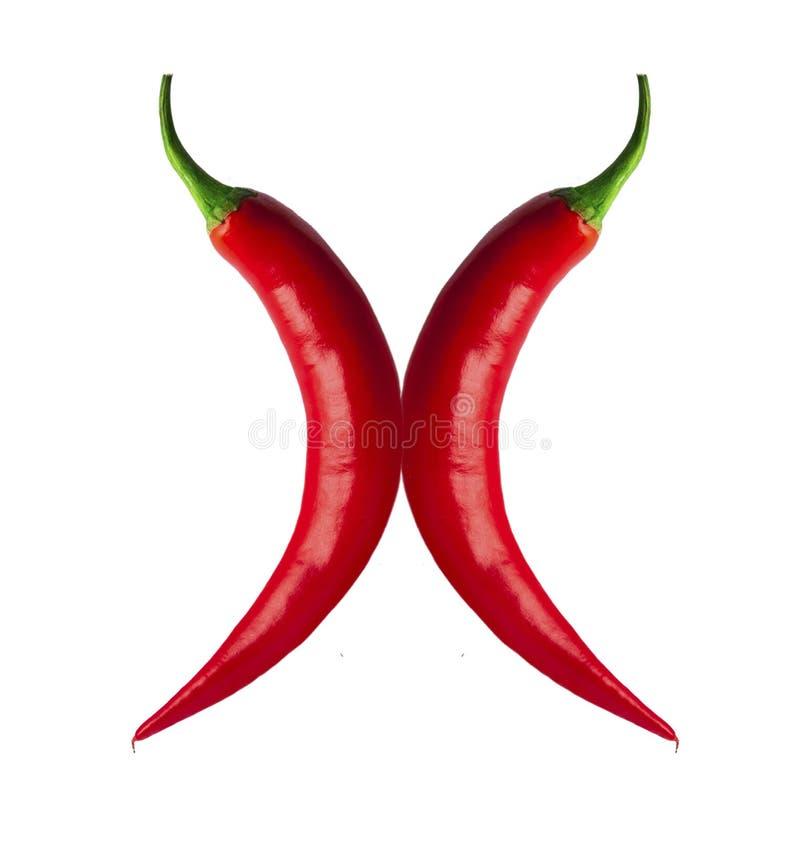Würzige rote Paprikas stockbild