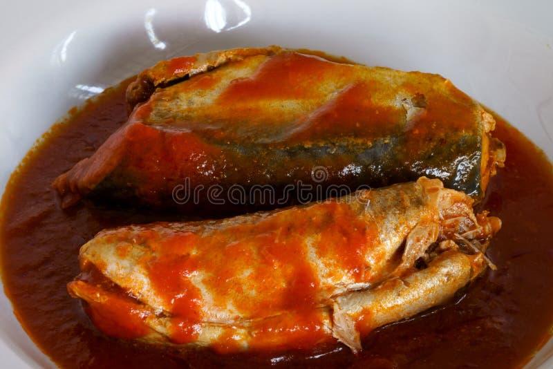Würzige Sardinen in den Tomatensaucefischkonserven stockbild