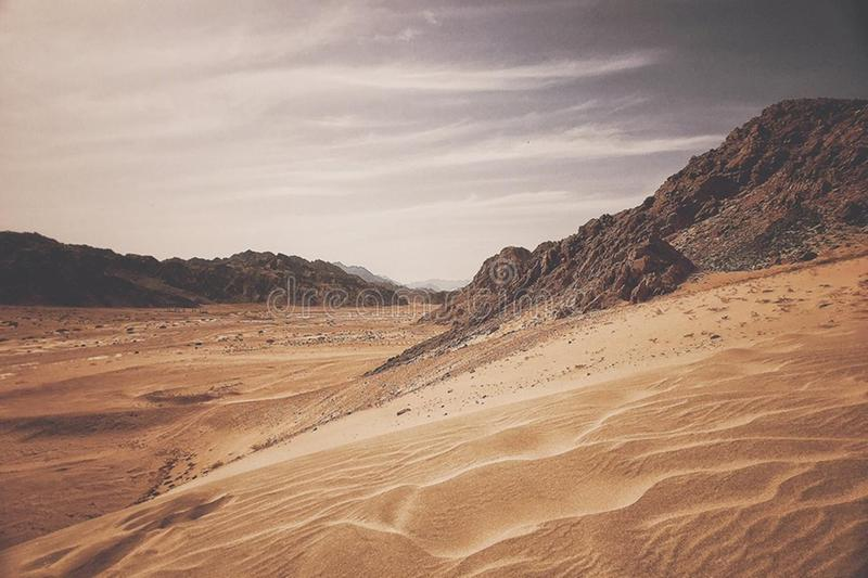 Wüste Ägypten Sinai stockbilder