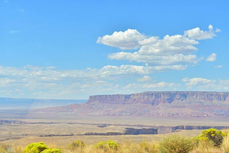 Wüste in Arizona lizenzfreie stockbilder