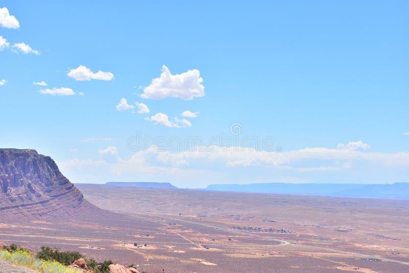 Wüste in Arizona lizenzfreie stockfotos