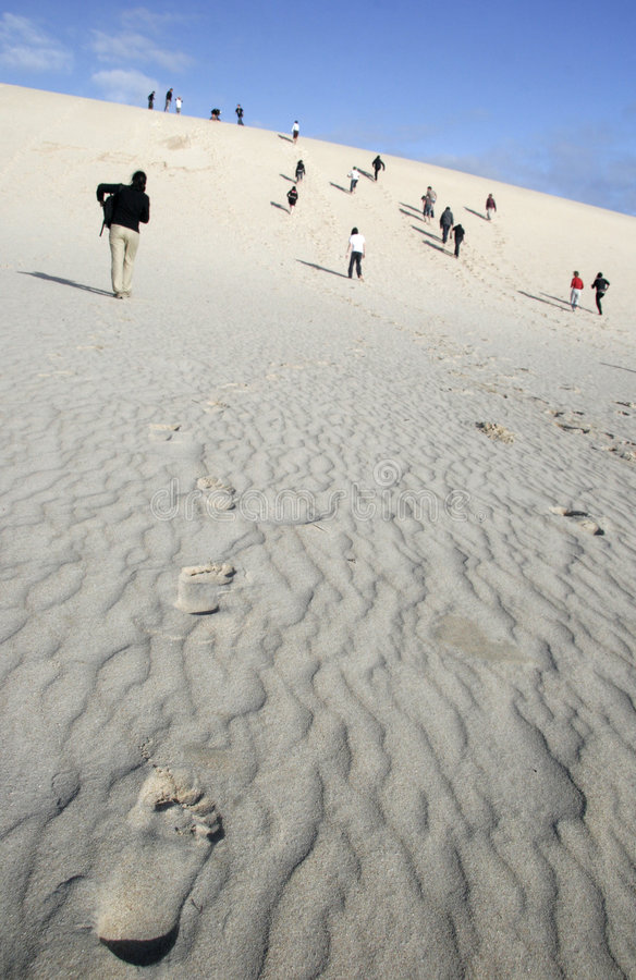 Wüste bemühen sich stockbilder