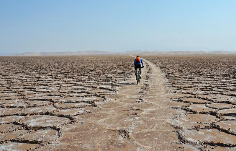 Wüste, die flach in Salz radfährt stockfotos