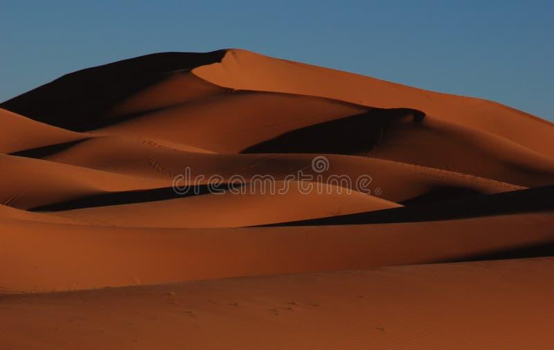 Wüste Marokko stockbilder