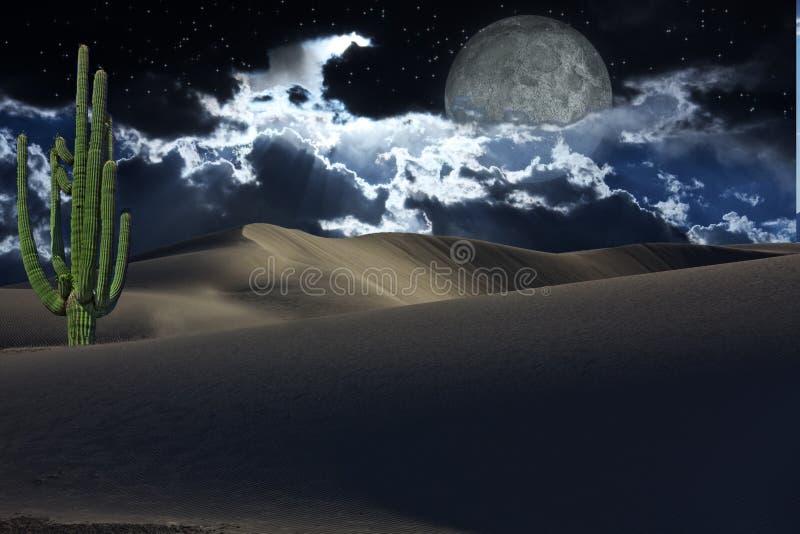 Wüste mit Sternen lizenzfreie stockbilder