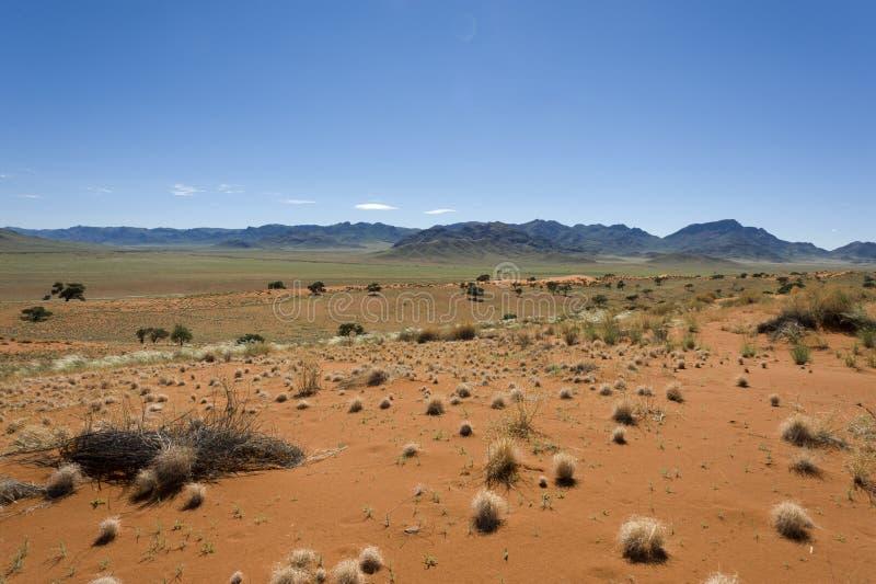 Wüste Namibia stockbild