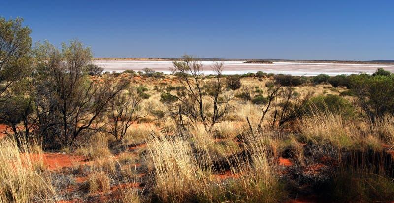 Wüste Salt Lake lizenzfreie stockbilder