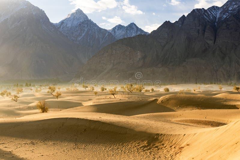 Wüste in Skadu, Pakistan stockfotografie