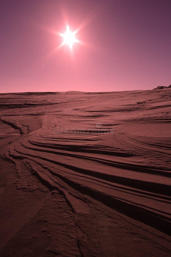 Wüste Sun lizenzfreie stockfotos