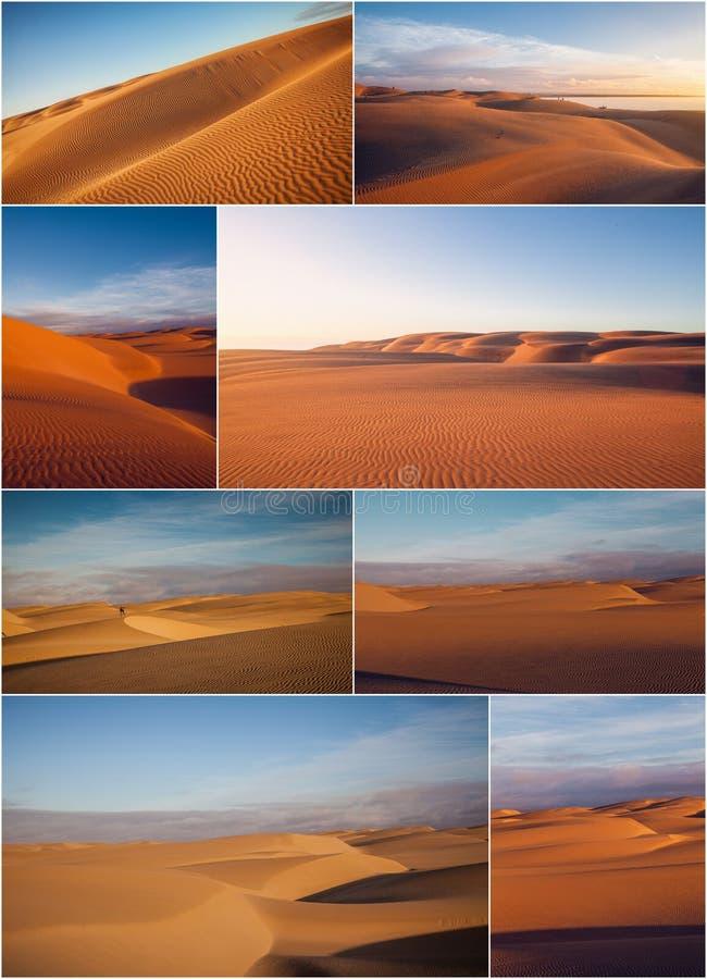 Wüste und Dünen stockfotografie