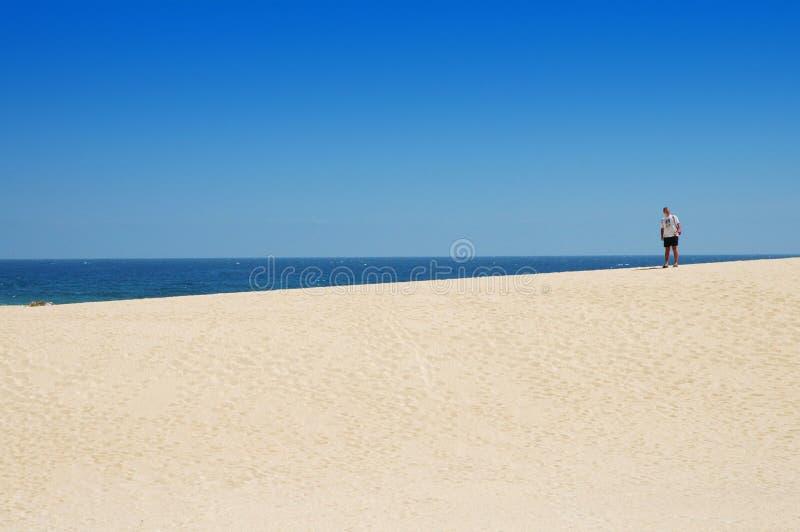 Wüste und Ozean stockfotos