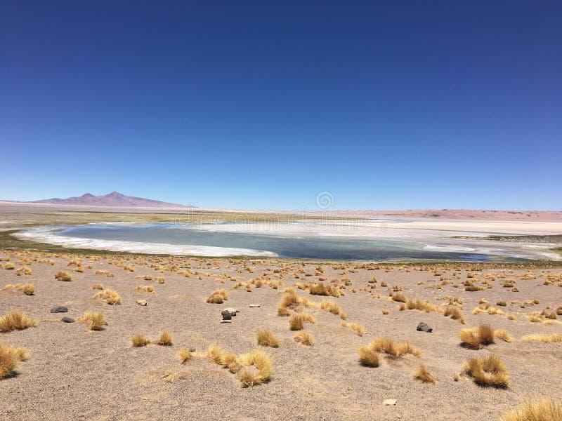 Wüste von atacama stockfotografie