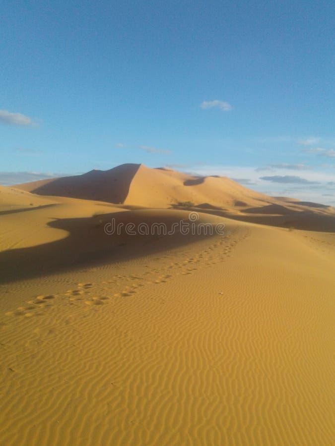 Wüste von Marokko lizenzfreie stockfotografie