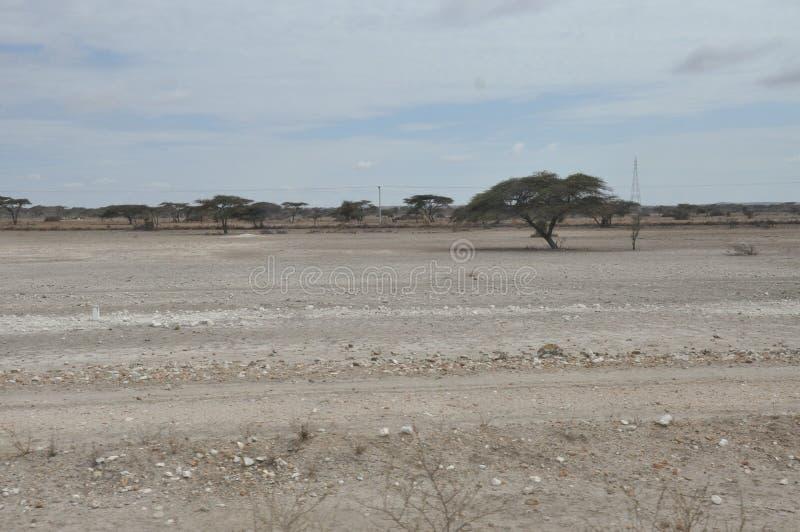 Wüste von Ostafrika stockfotografie