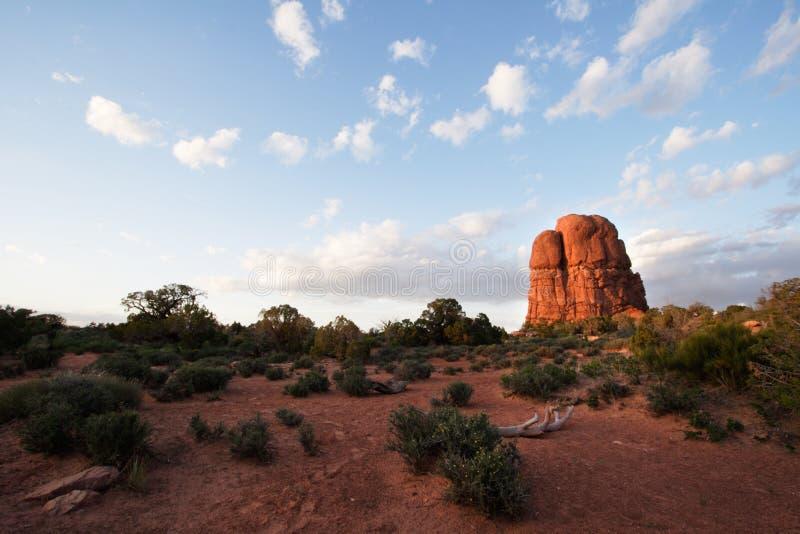 Wüstebutte-Sonnenuntergang stockfoto