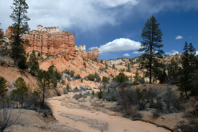 Wüsten-Fluss und rote Felsen: Landschaft lizenzfreie stockfotografie