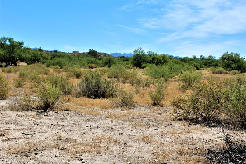 Wüsten-Landschaftslandschaft gelegen in Cochise County, St David, Arizona lizenzfreie stockfotografie
