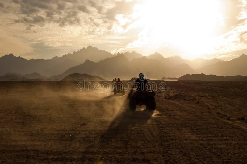 Wüsten-Leitungs-Safari stockfotografie