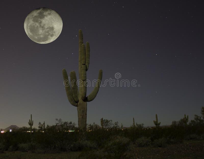 Wüsten-Mond lizenzfreie stockbilder