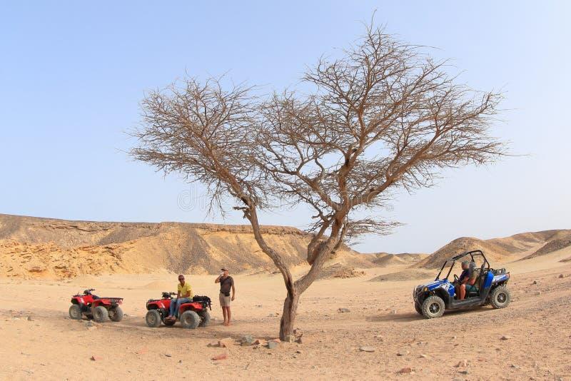 Wüsten-Safari in Marsa Alam stockfoto