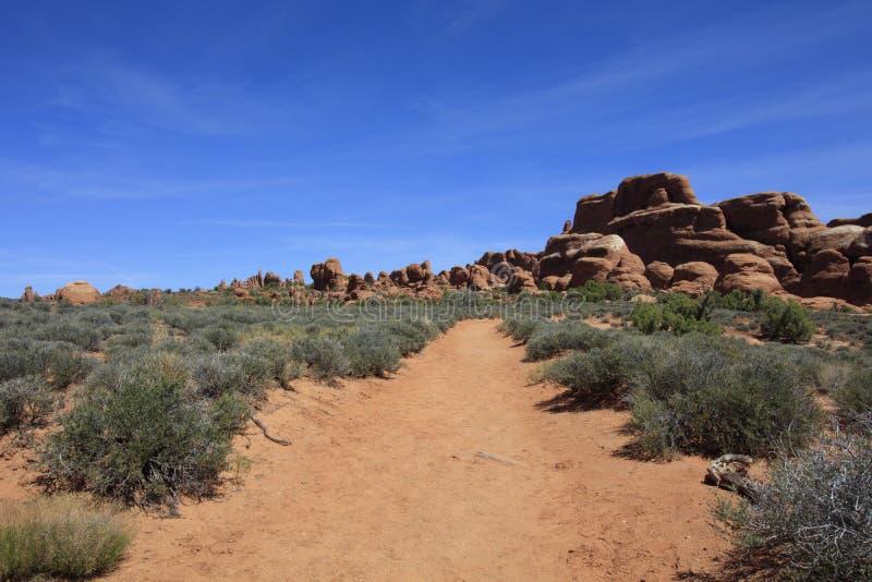 Wüsten-Spur lizenzfreies stockbild