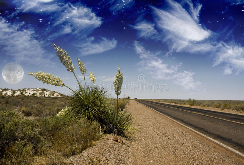 Wüsten-Straße stockfoto