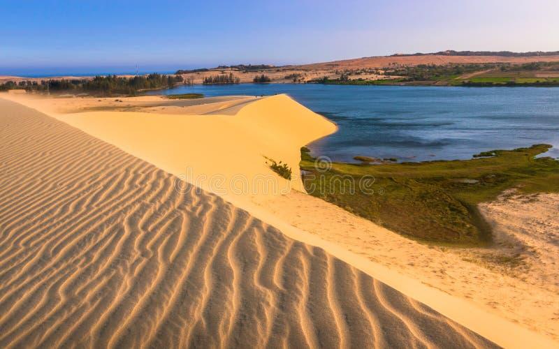 Wüsten-Szene mit Sanddünen, See, Anlagen und Sand-Mustern lizenzfreies stockbild