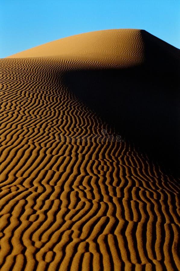 Wüstendüne lizenzfreie stockbilder