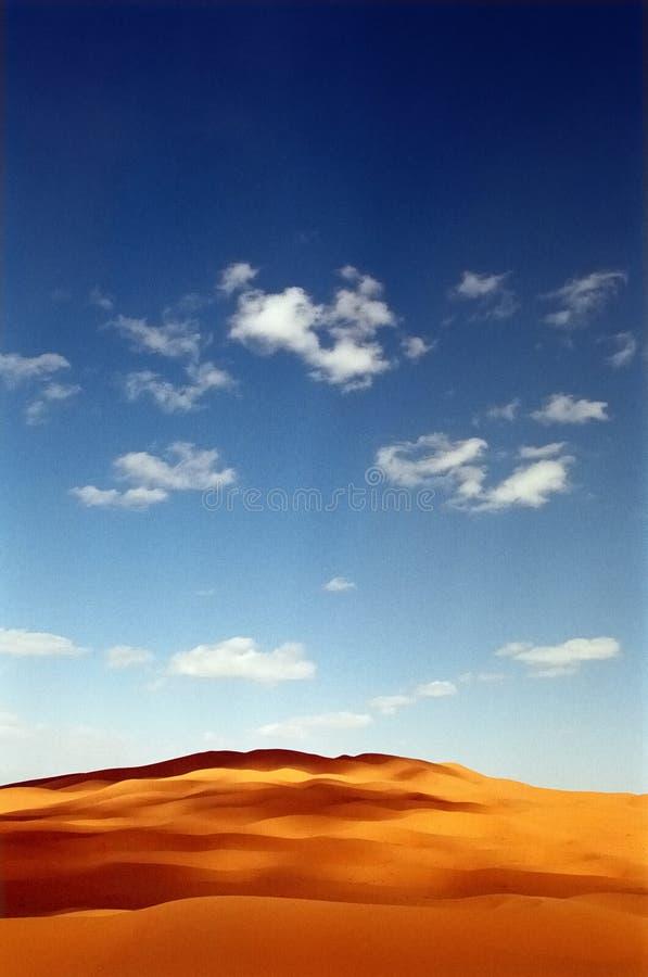 Wüstendüne lizenzfreie stockfotos