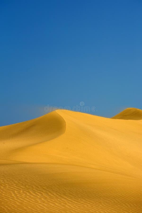Wüstendünen lizenzfreies stockbild