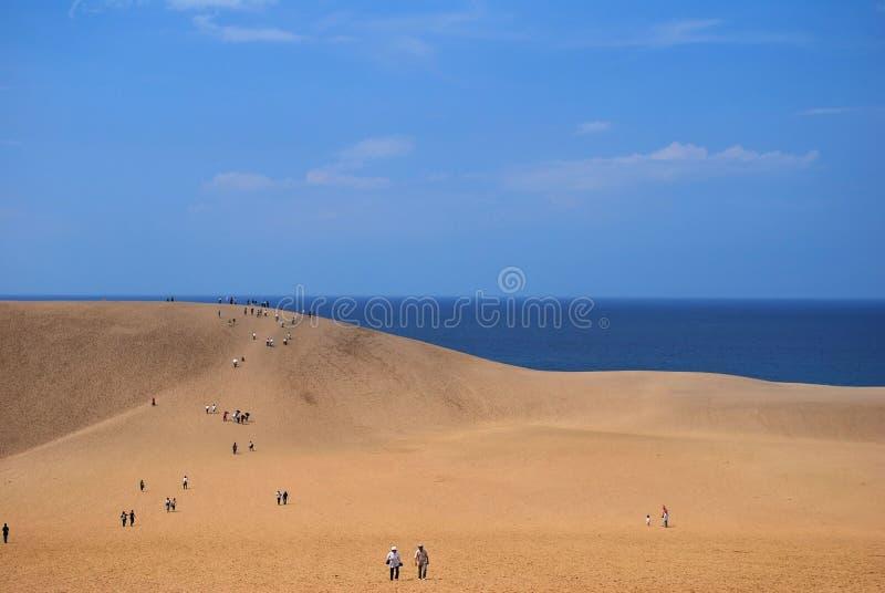 Wüstendünen, die Meer übersehen lizenzfreie stockbilder