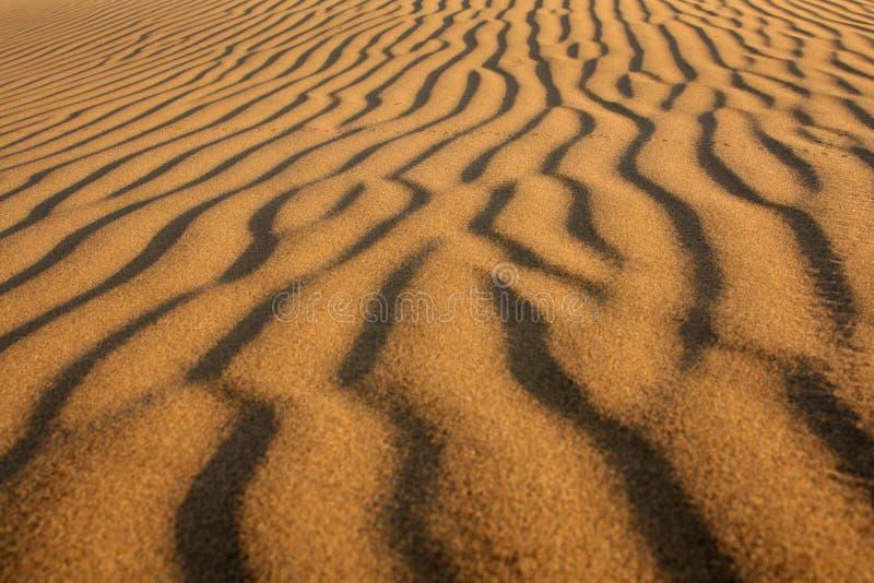 Wüstenhintergrund lizenzfreies stockfoto