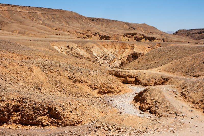 Download Wüstenlandschaft stockfoto. Bild von schlucht, hell, israel - 9090490