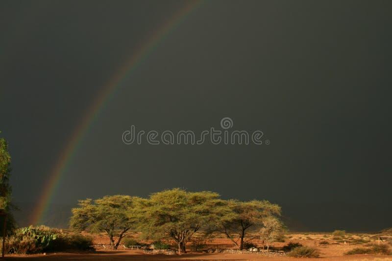 Wüstenregenbogen stockbild