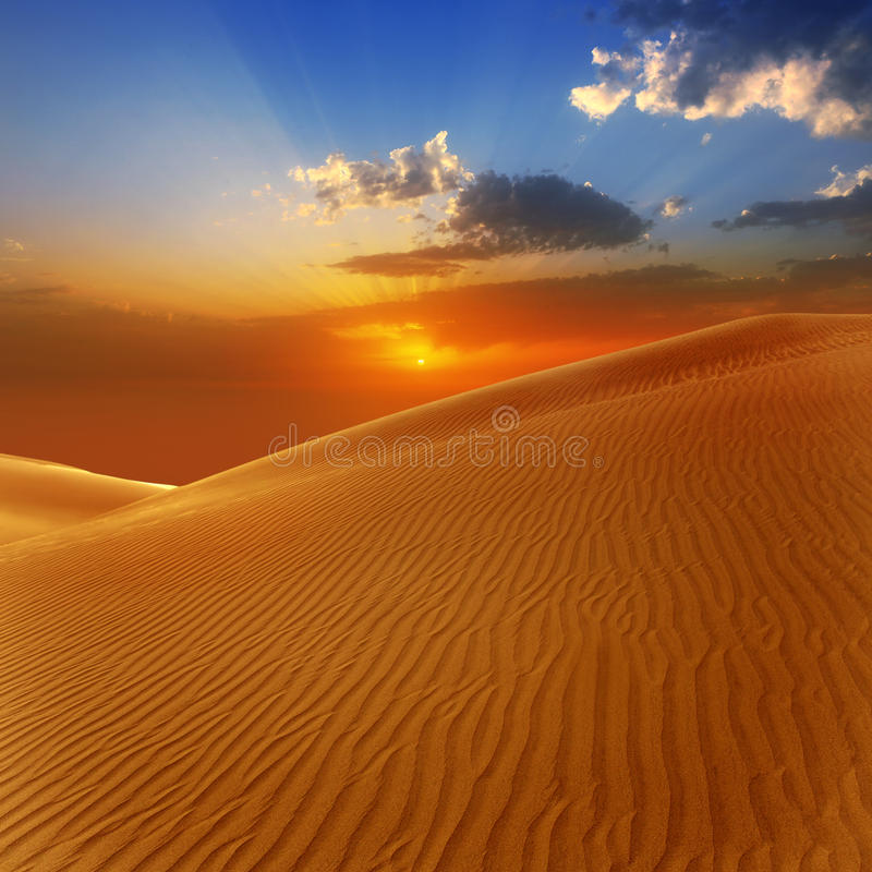 WüstenSanddünen in Maspalomas Gran Canaria stockbild